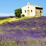 Pixwords PROVENCE